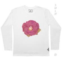 LSA/ Camellia