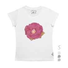 SSW/ Camellia